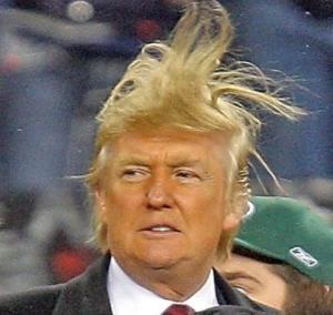 donald-trump-hair 2